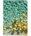 Affiche Lemon Water