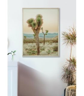 Affiche Nature Desert 4