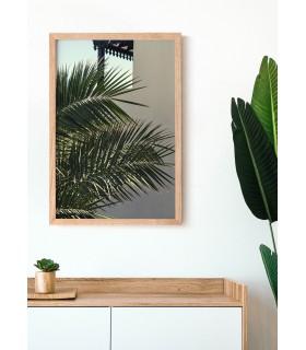 Affiche Nature Palmier