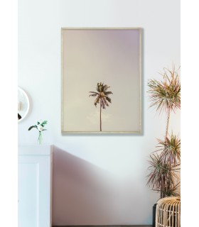 Affiche Palm Trees 6