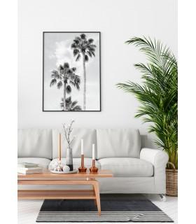 Affiche Palmier noir et blanc 3