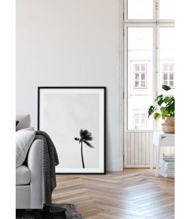 Affiche Palmier noir et blanc