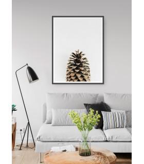 Affiche Pomme de pin