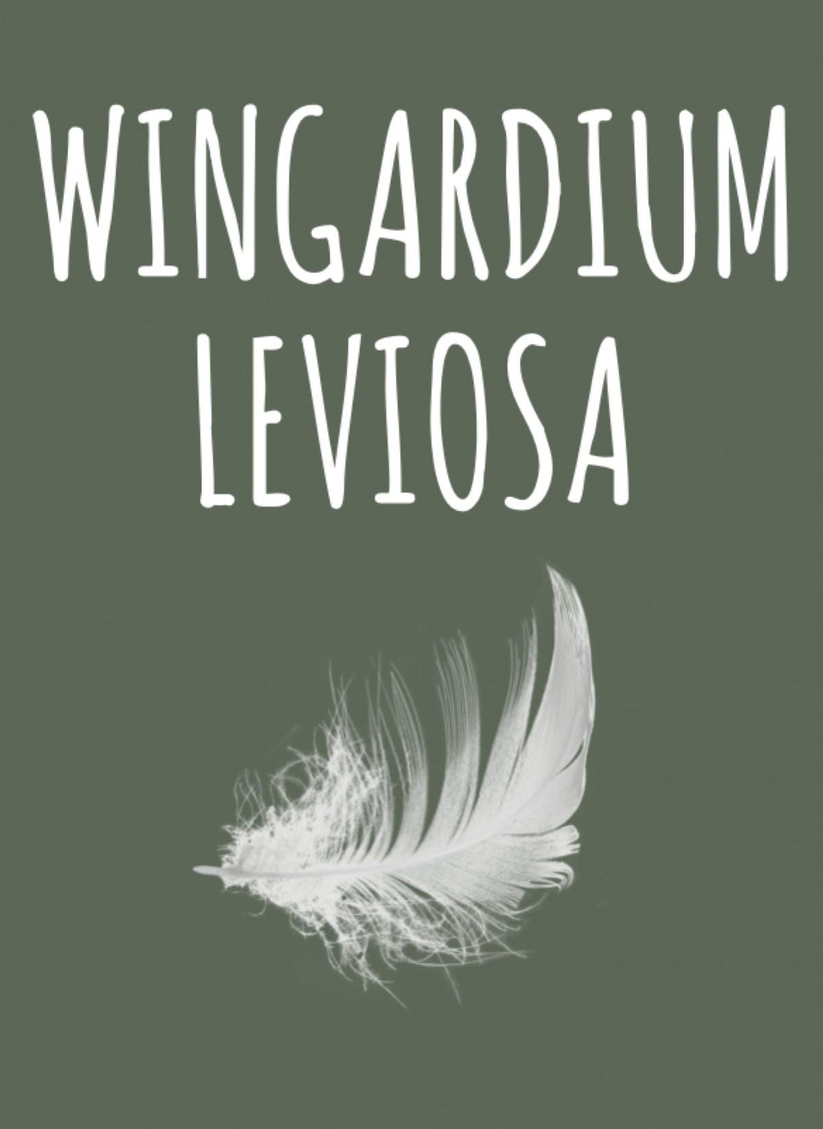 Poster Wingardium leviosa