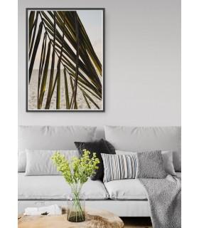 Affiche Nature Feuille palmier plage