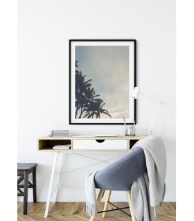 Affiche nature Palmiers Tropicaux