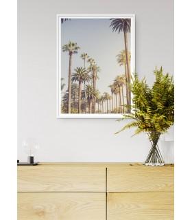Affiche Palmiers de Beverly Hills