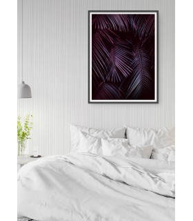 Affiche Feuilles de palmier tropical sombre