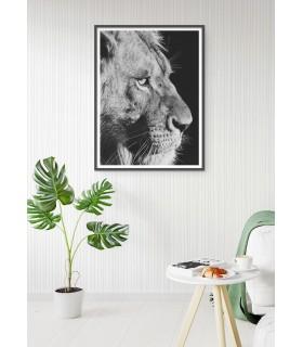 Poster Lion noir et blanc 4
