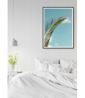 Affiche Palm Trees 3