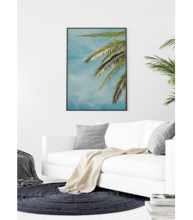 Affiche Palm Trees 4