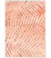 Affiche Feuilles de Palmier Tropical